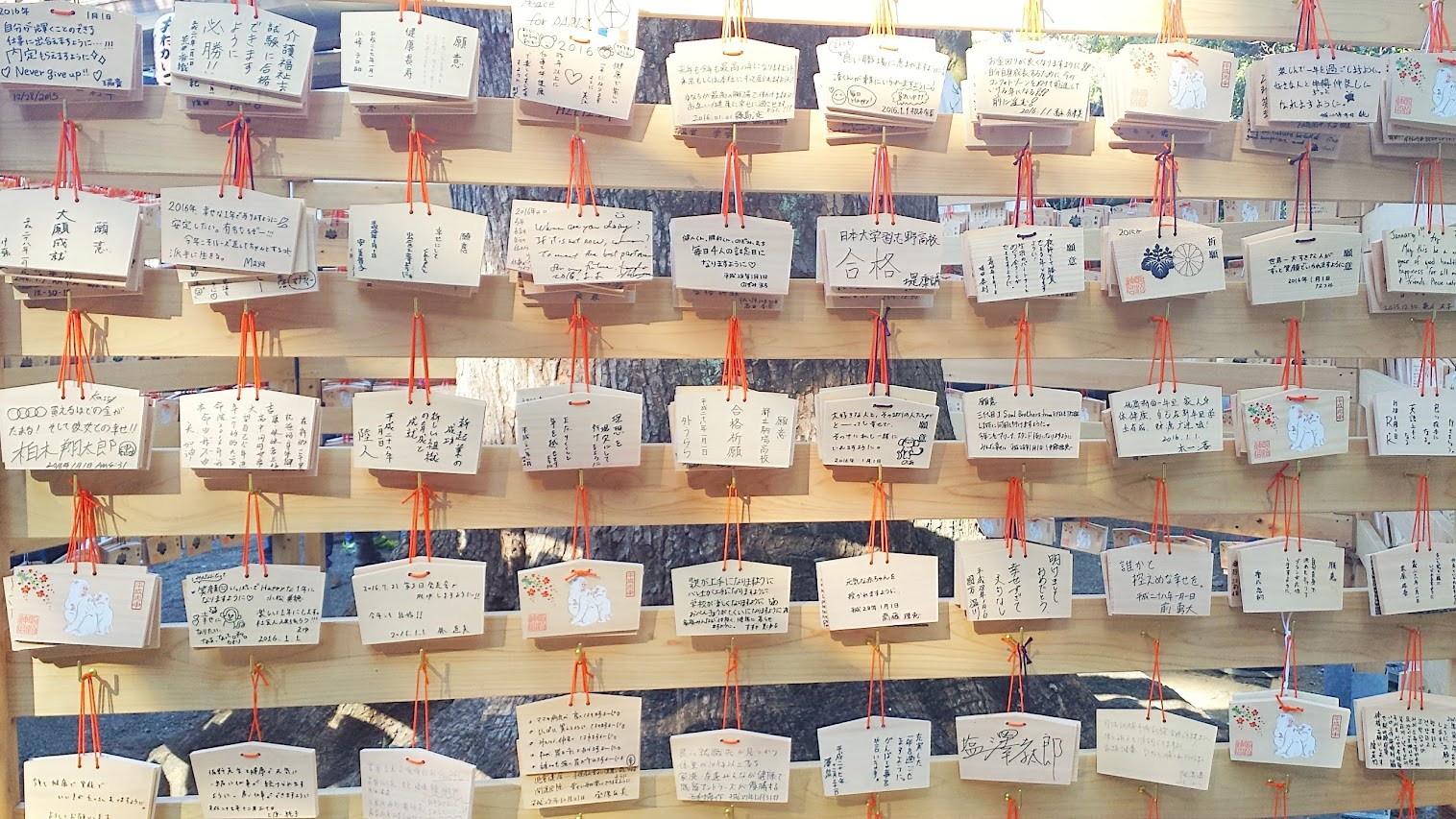 Ema boards at Meiji Shrine on New Year's Day