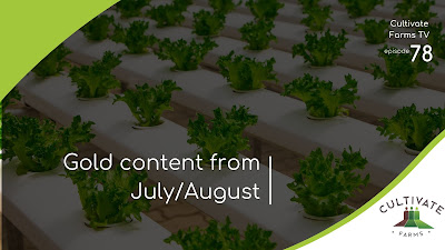 Gold content from July and August