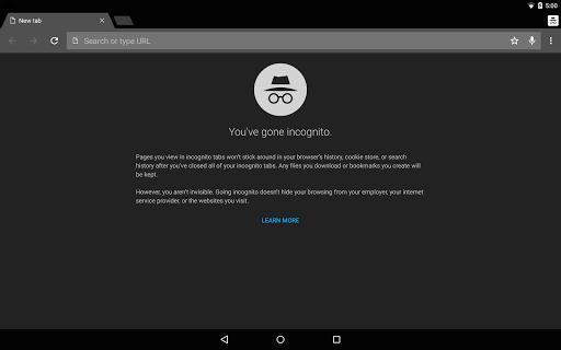 Chrome Dev Screenshots 8