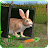 Ultimate Rabbit Simulator Icône