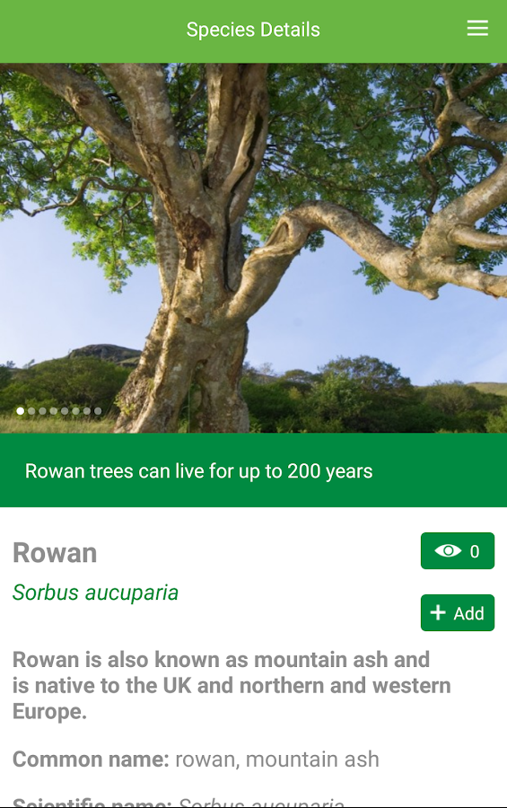 Tree ID - British trees- screenshot