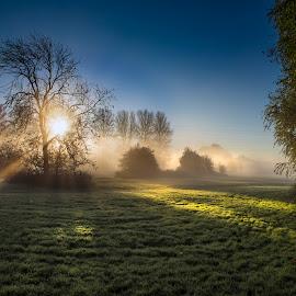 Misty morning by Andrew Richards - Landscapes Sunsets & Sunrises