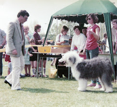 Photo: INT Show Budapest, HU 1985 Bobtail Dixie become a Champion of Hungary