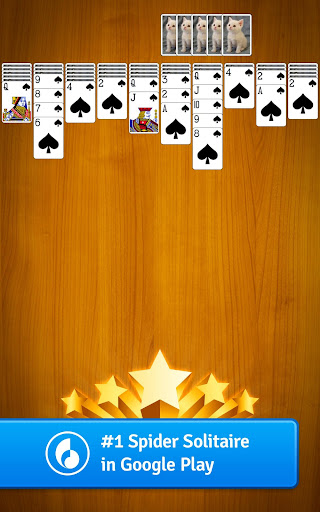 Spider Solitaire screenshot 13