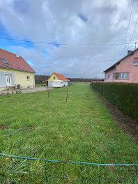 terrain à Schleithal (67)