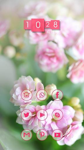Spring Warms Bloom Days