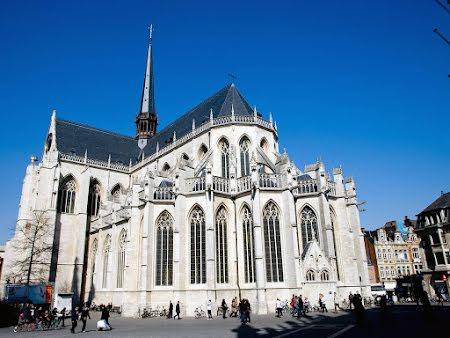 Louvain & Museum M