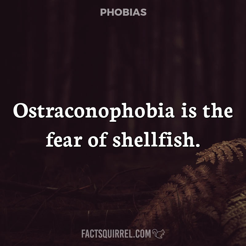 What is Ostraconophobia? (A Summary)