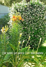 "Photo: 16-12-09 Lamindy del Blog ""Tutti Frutti"" (http://lamindyartesanias.blogspot.com/)"