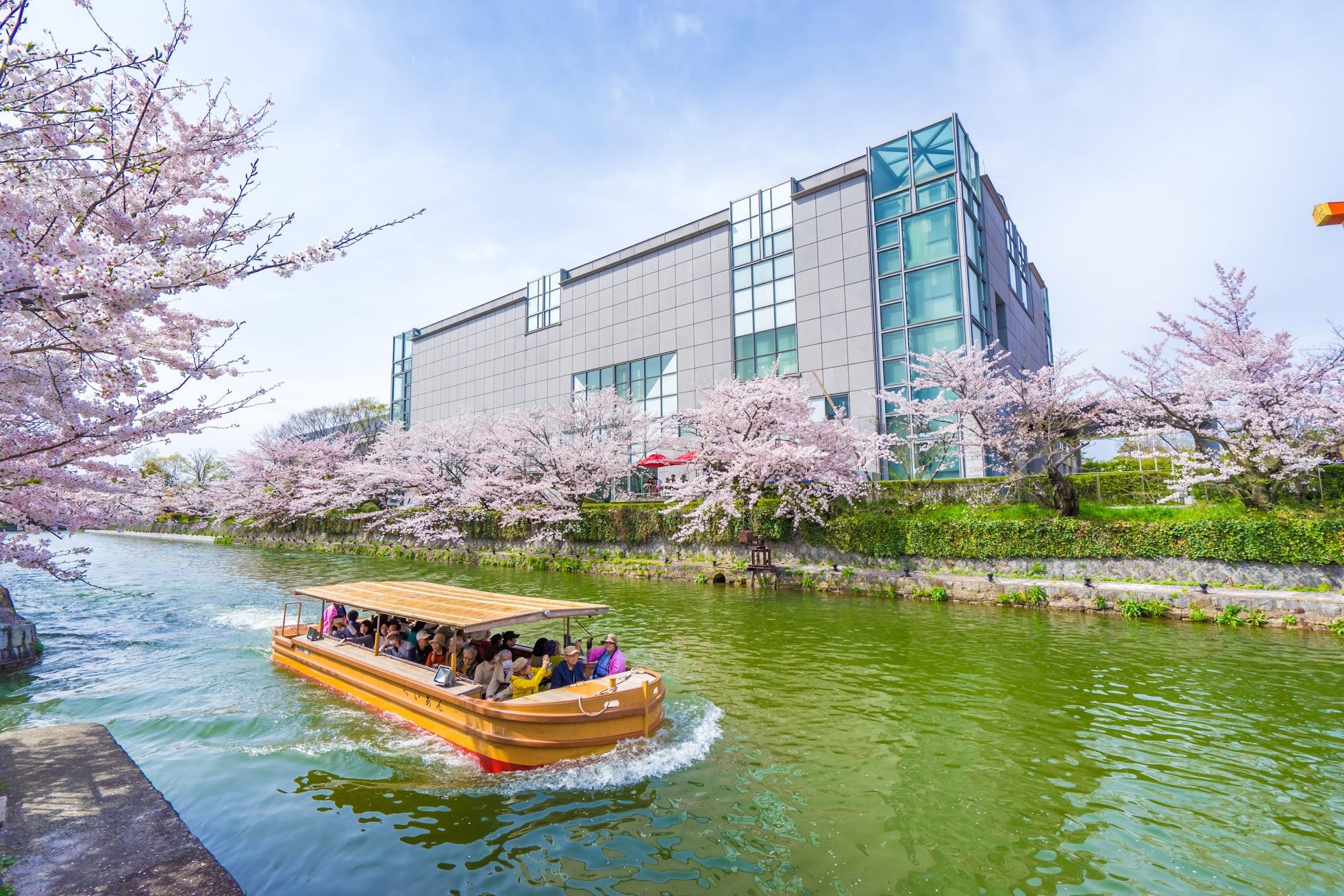 京都 岡崎疎水 十石舟1
