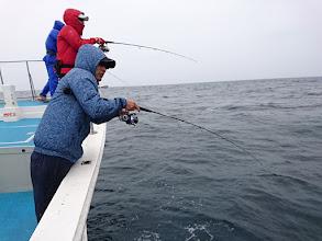 "Photo: ""ササノさん""もフィーッシュ! 「サメにやられる前に上げんと~!」"