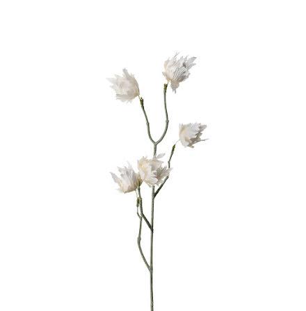 Eternell Vita blommor 55 cm