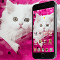 Pink Persian white Cat theme download
