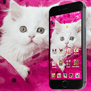 Pink Persian white Cat theme
