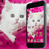 Unduh Pink Persian white Cat theme Gratis