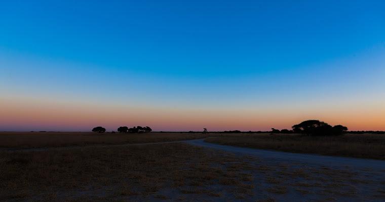 la pianura del Chobe di Maurizio Soravito