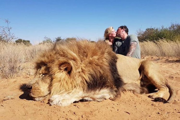 Canadians Darren and Carolyn Carter, who describe themselves as passionate conservationists, kissed as they posed with a lion they said they had shot while trophy hunting in SA.