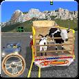 Eid Animals Transport Service in Cargo Truck