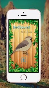 Birdsong - Bird of Sounds - náhled
