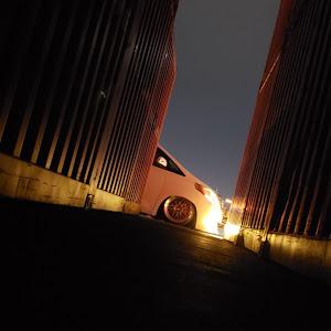 アルファード ANH20W のカスタム事例画像 《20皇低》KOUさんの2020年02月09日05:48の投稿