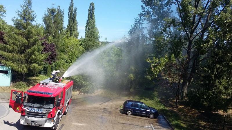 Pokaz Straży Pożarnej