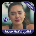 أغاني تركية حزينة بدون أنترنيت -music turkish 2019 icon