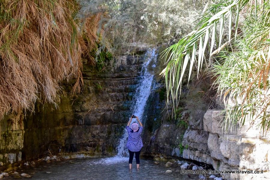 Фото у водопада на ручье Давида в национальном парке Эйн-Геди. Экскурсия в Израиле.