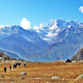 Walk On by Jayanta Roy - Landscapes Mountains & Hills ( hills, mountains, himalaya, snow, india )