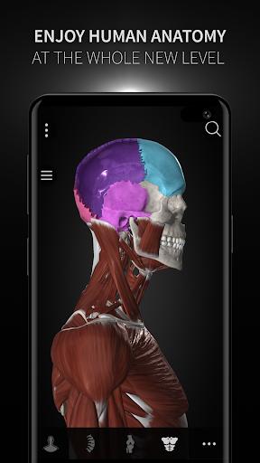 Anatomyka - 3D Human Anatomy Atlas 1.8.5 screenshots 7