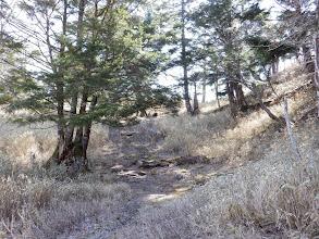 1810m付近で登山道と合流