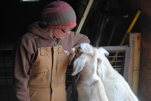 156: Why We No Longer Raise Goats