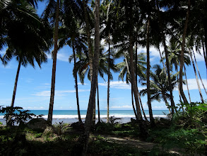 Photo: These photos were taken on our two hour drive from the Nias island airport to Teluk Dalam which is the largest town on the island in south Nias.