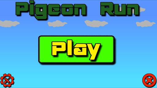 Pigeon Run