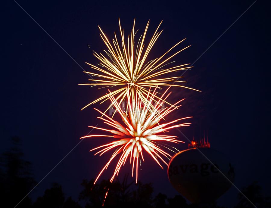Local Savage Fireworks 1 by Gary Amendola - Public Holidays July 4th