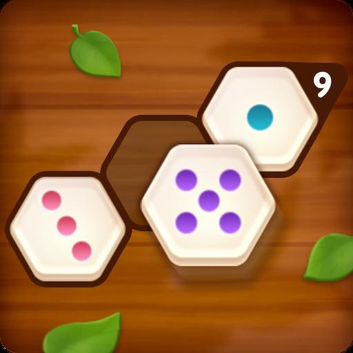 Number Puzzle Hexa