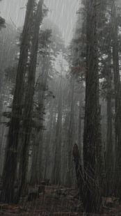 Sensual Dreams Forest- screenshot thumbnail
