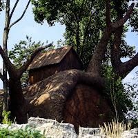 Casa di masha e orso di