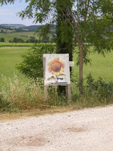 Photo: Cartello Stradina girasole