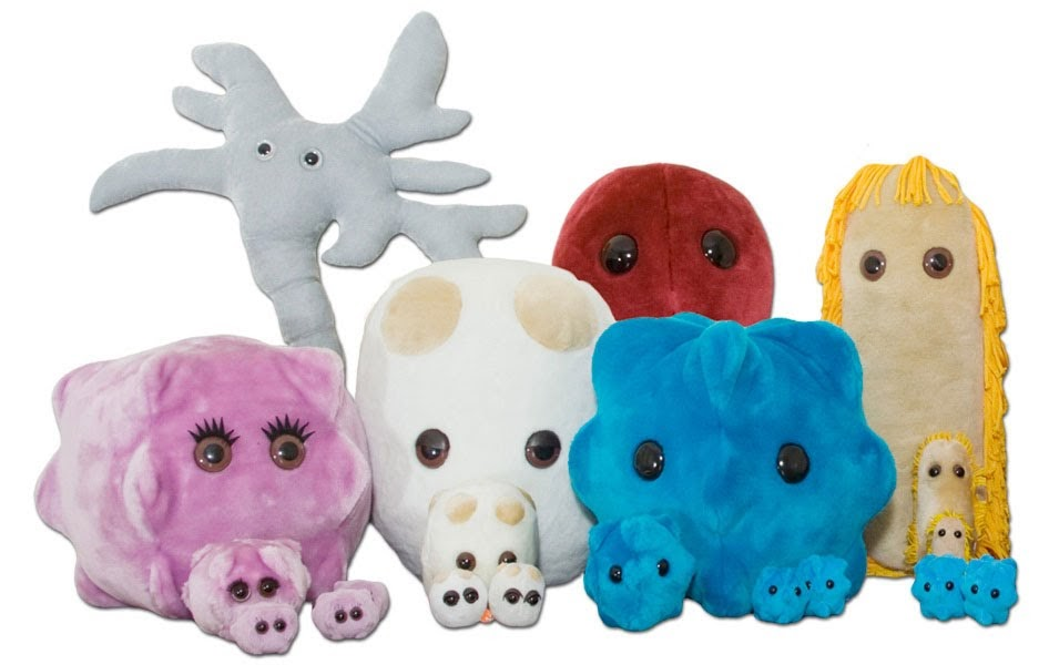 Toy company markets 'charming' 'cuddly' venereal diseases to kids