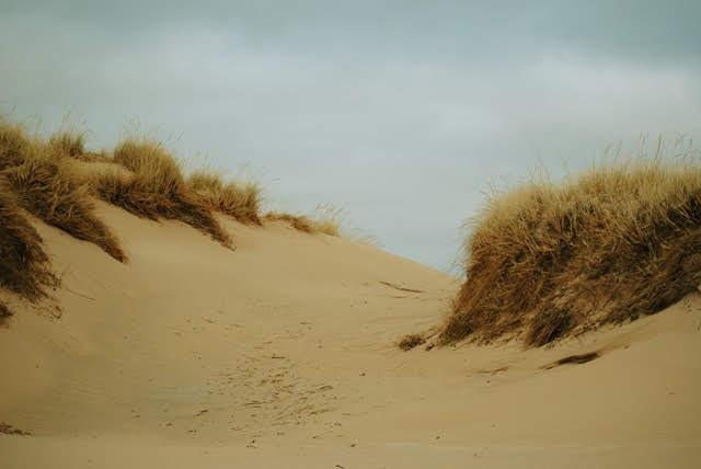 Sleeping Bear dunes by Jonathan Golden