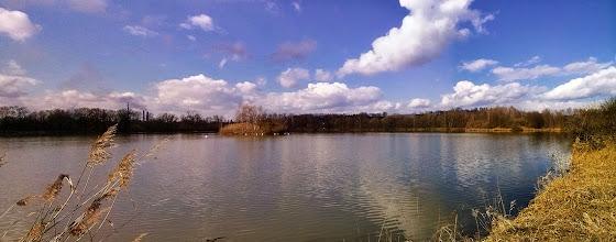 Photo: Košťálovický rybník pohledem od silnice