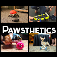 Pawsthetics - Using 3D Printing to Give Pets a Second Chance