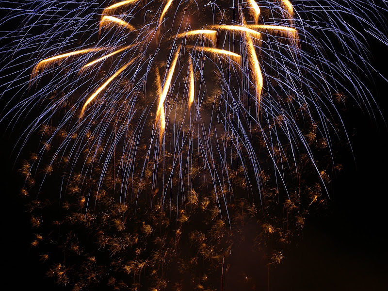 Violet Fireworks  di caterina_kitta
