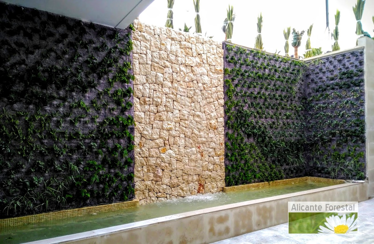 Jardín vertical recién plantado y evolución
