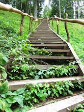 Photo: Nulipom tikrai daugiau nei šimtą laiptų!