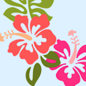 Kona Vacation Rentals icon