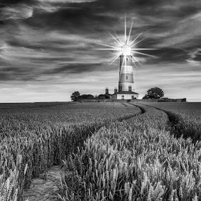 The Lighthouse by Jan Murphy - Black & White Landscapes ( wheat, field, happisburgh, monochrome, black and white, norfolk, lighthouse, night, starlights,  )