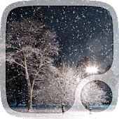 Winter Night Live Wallpapers