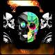 4K Skull Wallpaper for PC-Windows 7,8,10 and Mac