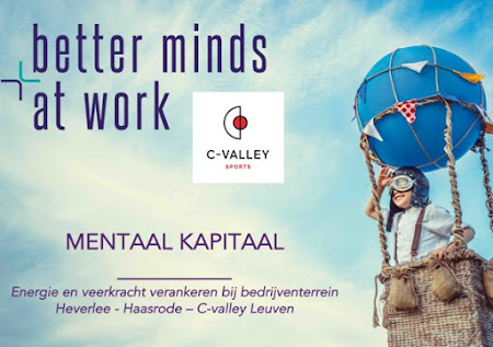 C-VALLEY LEUVEN: